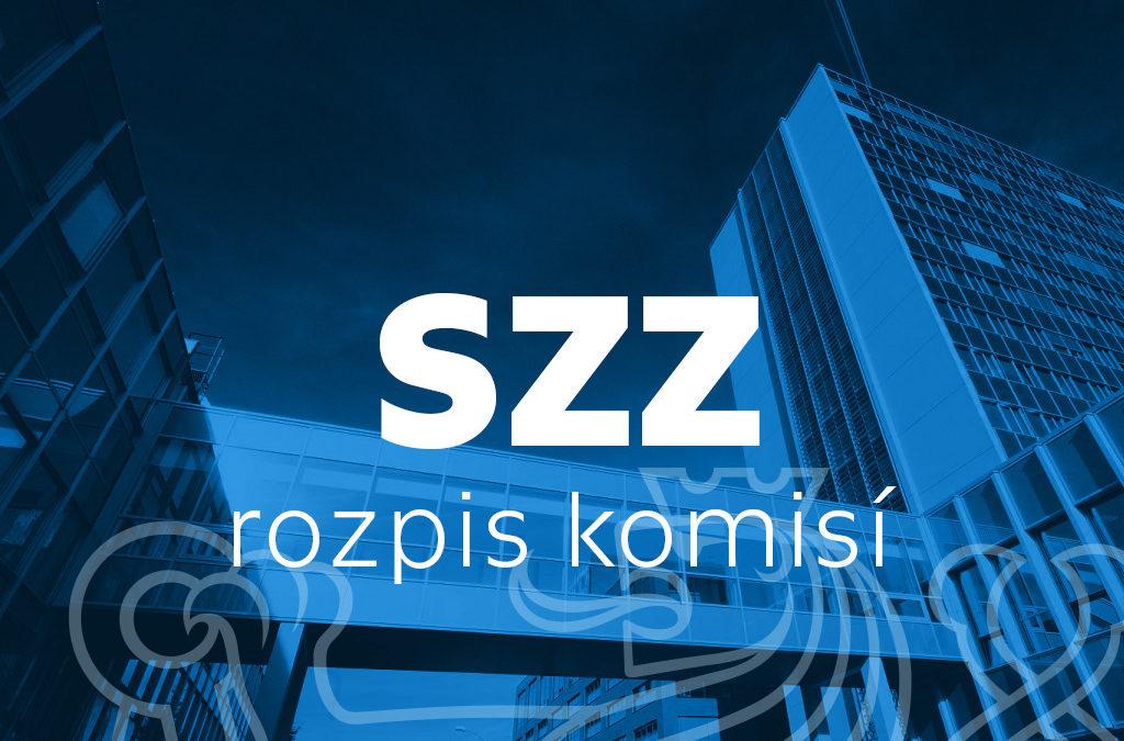 SSZ – komise